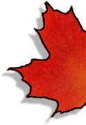 Canadian Maple Leaf - half