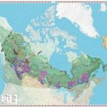 Canadian Geographic Giant Floor Map – The Canadian Boreal Forest